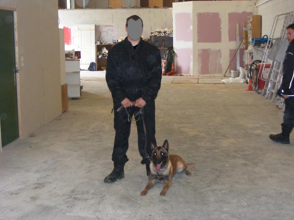 CENTRE CANIN ELITEFORM - dressage de chiens dans le nord
